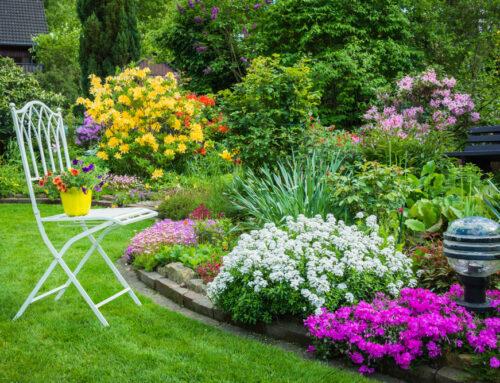 شركة تنسيق حدائق منزلية في ابوظبى |0556989355
